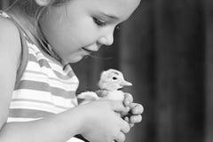 Petite fille tenant le canard de bébé Photographie stock libre de droits