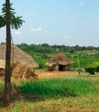 Petite Huts in Uganda royalty free stock images