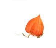 Petite lampe orange Images stock