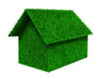 Petite maison d'herbe verte Photo stock