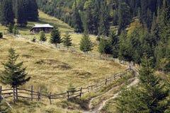 Petite maison dans la forêt Photographie stock libre de droits