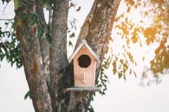 Petite maison des oiseaux Photographie stock libre de droits