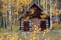 Petite maison en bois dans le verger de tremble du Colorado image stock
