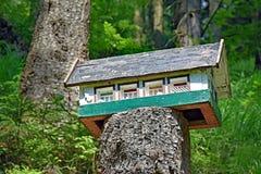 Petite maison miniature sur un tronc d'arbre scié dans la forêt Photographie stock libre de droits