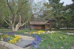 Petite maison sur une pelouse Image stock