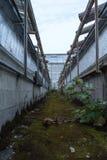 Petite manière de chemin entre les bâtiments industriels Photos libres de droits