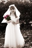 Petite mariée 1 image stock