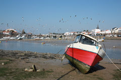 Petite marina Image libre de droits