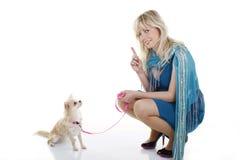 Petite obéissance de chien Image libre de droits