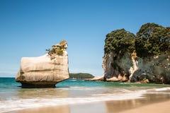 Petite pile de mer blanche outre de plage sablonneuse au Nouvelle-Zélande Photo stock
