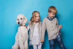 Petite princesse et garçon beau avec le caniche royal Amour Amitié famille Portrait de studio au-dessus de fond bleu Images libres de droits