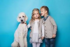 Petite princesse et garçon beau avec le caniche royal Amour Amitié famille Portrait de studio au-dessus de fond bleu Image stock