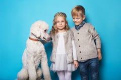 Petite princesse et garçon beau avec le caniche royal Amour Amitié famille Portrait de studio au-dessus de fond bleu Photo libre de droits