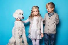 Petite princesse et garçon beau avec le caniche royal Amour Amitié famille Portrait de studio au-dessus de fond bleu Photographie stock libre de droits