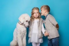 Petite princesse et garçon beau avec le caniche royal Amour Amitié famille Portrait de studio au-dessus de fond bleu Photographie stock