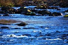 Petite rapide dans Rogue River chez Belmont MI image stock
