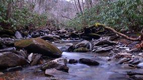 Petite rivière avec Moss Covered Stones dans les bois profonds de grand Smokey Mountains National Park Images stock