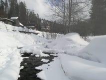 Petite rivière chez Szczyrk, Pologne image libre de droits