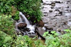 Petite rivière en Indonésie Photographie stock