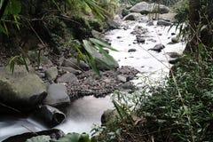 Petite rivière en Indonésie image stock