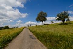 Petite route par un champ Photos libres de droits
