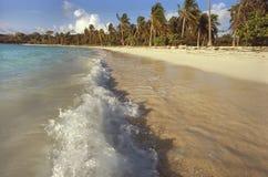 Petite rupture d'ondes sur une plage des Caraïbes Images libres de droits