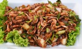 Petite salade de crevette Photo libre de droits