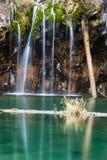 Petite section des automnes nuptiales de voile et piscine de lac accrochant Image stock