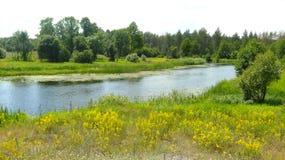 Petite, silencieuse rivière Photos stock