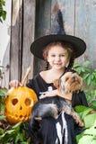 Petite sorcière avec le potiron de Halloween Photos stock