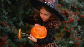 Petite sorcière d'enfant Halloween sur un fond des feuilles d'automne, fille tenant le potiron avec une bougie et un bâti brûlant banque de vidéos