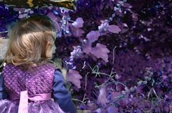 Petite sorcière, une fille dans un costume de sorcière, fille habillée en tant que sorcière dans la forêt avec le chapeau, Hallow images libres de droits