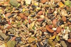 Petite texture d'alimentation des animaux Image libre de droits