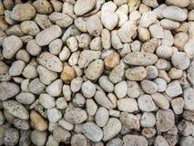 Petite texture de fond de pierres Photos stock