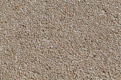 Petite texture de mur de pierres photo stock