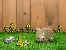 Petite tirelire derrière une petite correction d'herbe fraîche Photos libres de droits