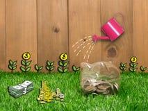 Petite tirelire derrière une petite correction d'herbe fraîche Photo libre de droits