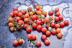Petite tomate photo stock