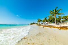 Petite vague en plage de Clairs de raisins secs en Guadeloupe photo libre de droits