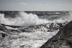 Petite ville suédoise à une île rocheuse Photo stock