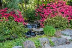 Petites cascade et fleurs photographie stock