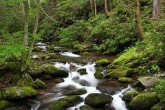 Petites cascades photo stock
