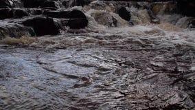 Petites cascades et écoulement le long d'une haute rivière écossaise de montagnes à sutherland pendant novembre banque de vidéos
