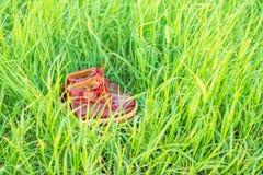 Petites chaussures de bébé rouges mignonnes dans l'herbe verte Photos libres de droits