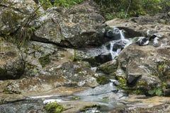 Petites chutes dessus sur le courant de Waipio le long de la route à Hana Photo libre de droits