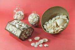 Petites coquilles de mer dans des pots en verre Photographie stock libre de droits