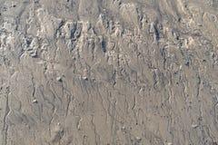 Petites criques de marée avec vidanger des criques de l'eau Photographie stock libre de droits
