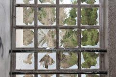 Petites fenêtres avec le verre et les pins cassés à l'arrière-plan Image stock