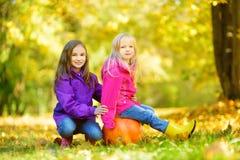 Petites filles adorables ayant l'amusement sur une correction de potiron le beau jour d'automne Photos libres de droits