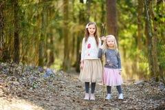 Petites filles adorables sélectionnant les premières fleurs du ressort dans les bois la belle journée de printemps ensoleillée Image libre de droits